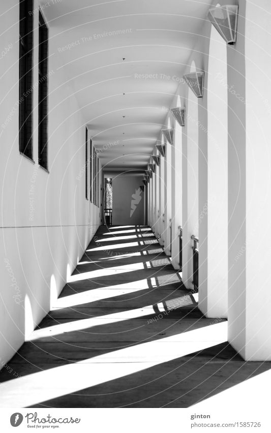 Shadows in the narrow corridor Lamp Tunnel Building Architecture Wall (barrier) Wall (building) Sharp-edged Black White Symmetry Corridor piers buttresses
