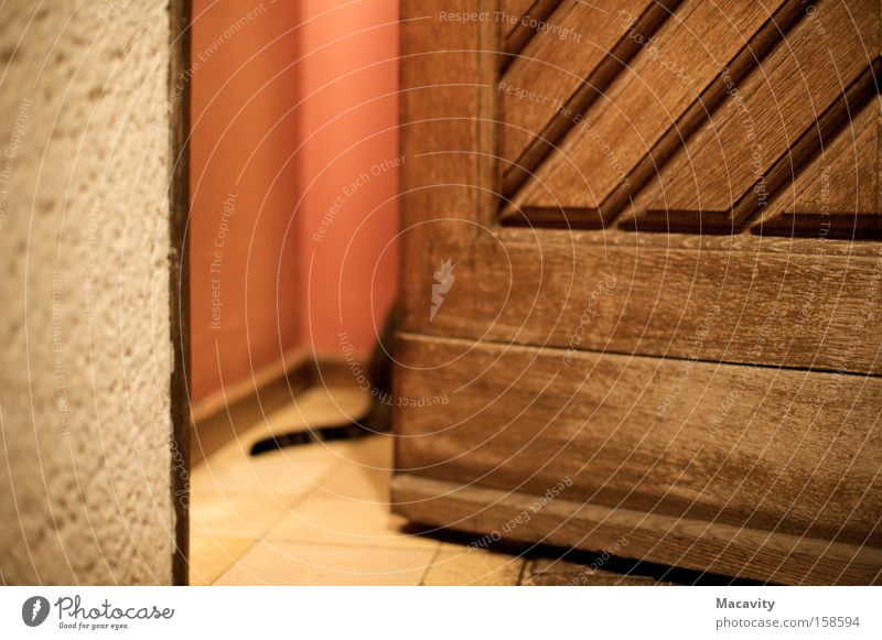Red Animal Cat Line Brown Door Facade Hope Safety Open Protection Contact Trust Warm-heartedness Curiosity Hide