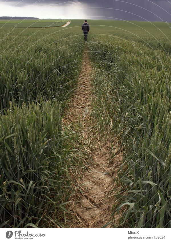 Man Summer Clouds Loneliness Adults Street Dark Lanes & trails Sadness Rain Field Going Dirty Walking Hiking Running sports