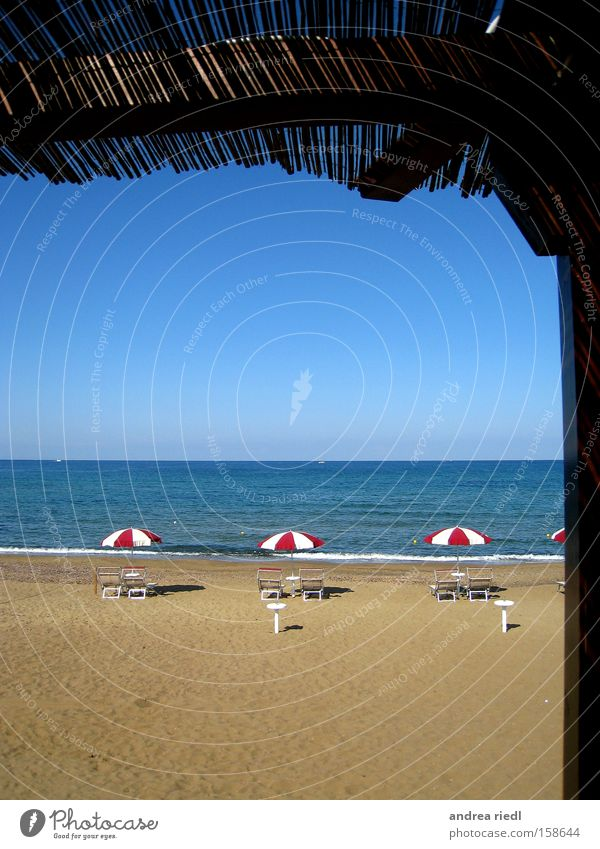 Ocean Beach Vacation & Travel Sand Coast Italy Sunshade Mussel Tuscany Pisa Florence Comical Siena Restorative