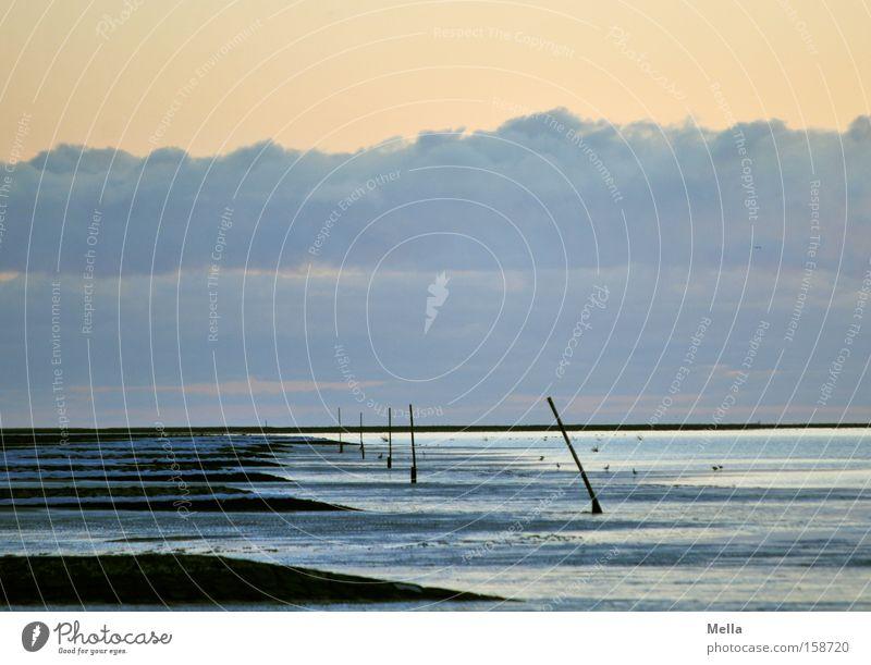 Water Sky Ocean Beach Vacation & Travel Calm Clouds Loneliness Coast Empty North Sea Low tide Break water