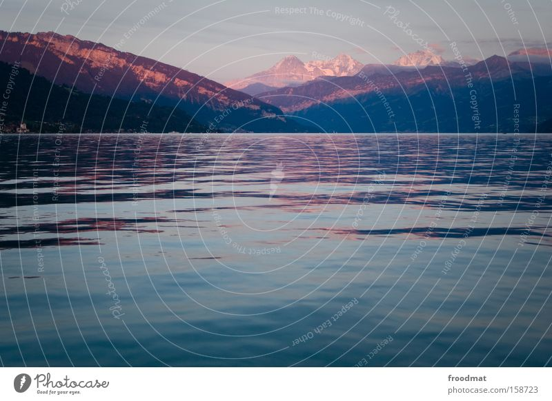 Water Calm Mountain Lake Large Romance Peace Kitsch Switzerland Alps Swiss Alps Peaceful Thun Confederate