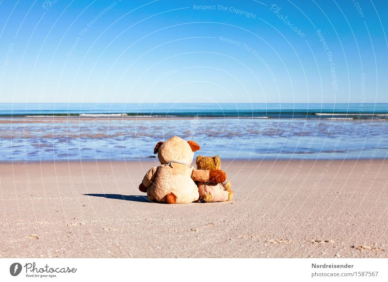 Relax your soul Picnic Vacation & Travel Far-off places Summer vacation Beach Ocean Parenting Elements Cloudless sky Beautiful weather North Sea Baltic Sea Toys