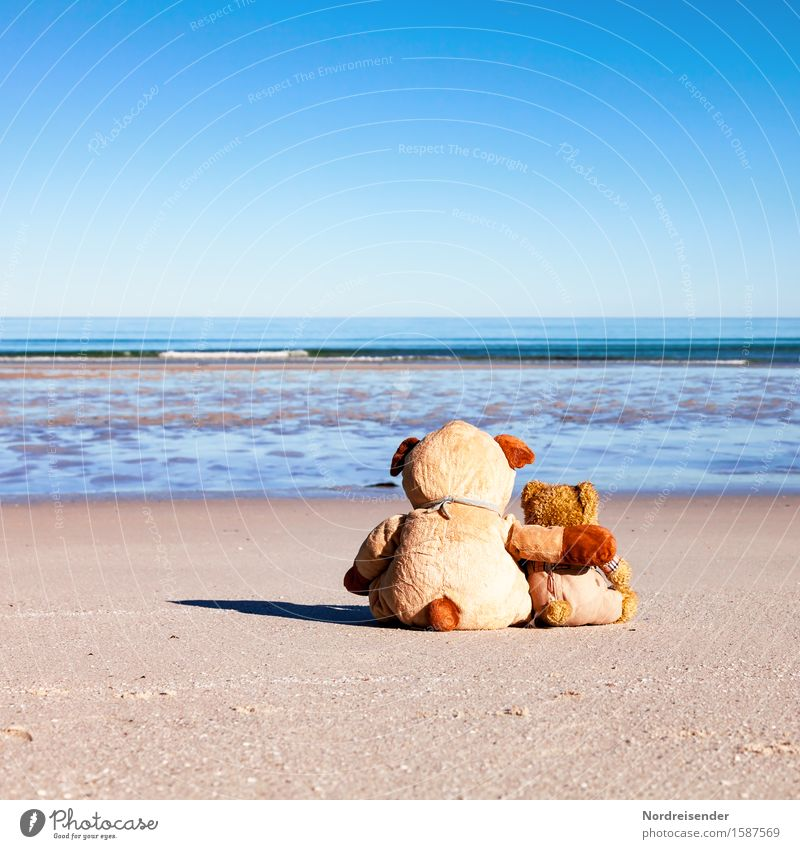 Vacation & Travel Summer Water Sun Ocean Beach Far-off places Sand Together Friendship Happiness Island Romance Cute Friendliness Baltic Sea