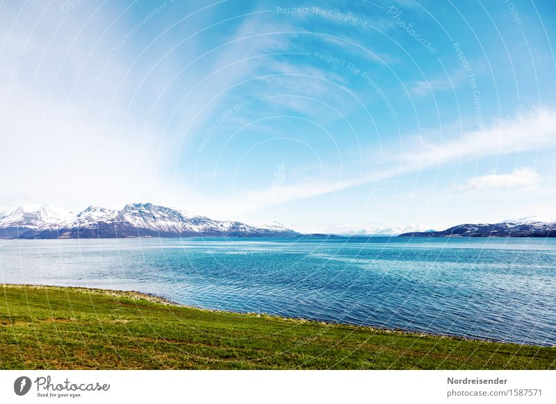Northern Europe Vacation & Travel Elements Air Water Sky Clouds Summer Beautiful weather Meadow Mountain Snowcapped peak Coast Fjord Ocean Friendliness Fresh