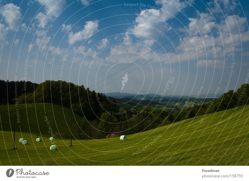 Sky Summer Clouds Forest Meadow Grass Mountain Landscape Vantage point Switzerland Alps Idyll Hill Swiss Alps Juicy Lawnmower