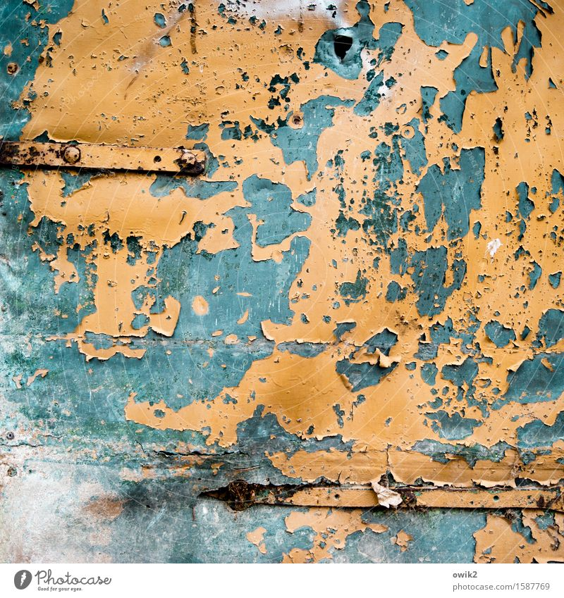 typhus fever Door metal door Tin Bodywork damage Metal To dry up Old Orange Turquoise Decline Transience Destruction Hinge Ravages of time Derelict Flake off
