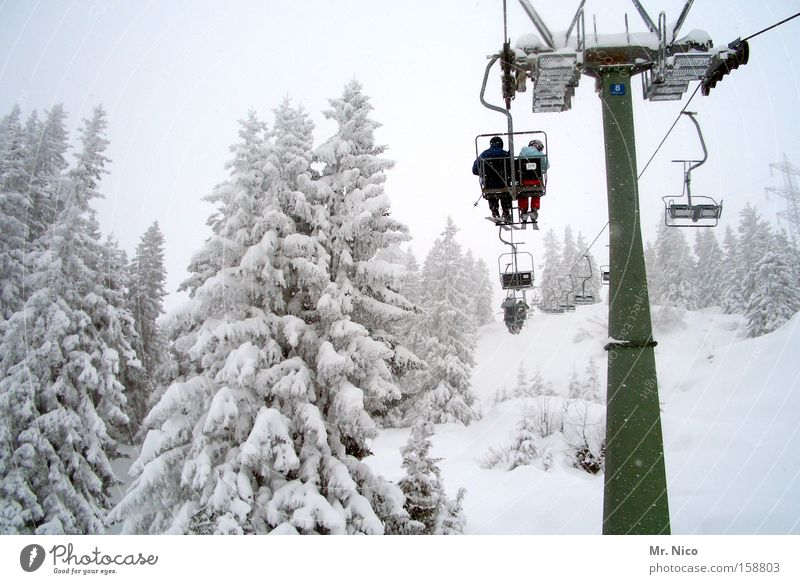 Afterwards Chair lift Winter White Chase Winter vacation Nature Cold Hover Seasons Winter sports Ski resort Winter forest Snow two-seater