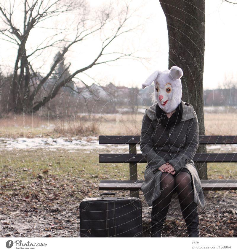 Woman White Winter Joy Animal Garden Funny Park Easter Carnival Hare & Rabbit & Bunny Suitcase Carnival costume Costume Dress up Easter Bunny
