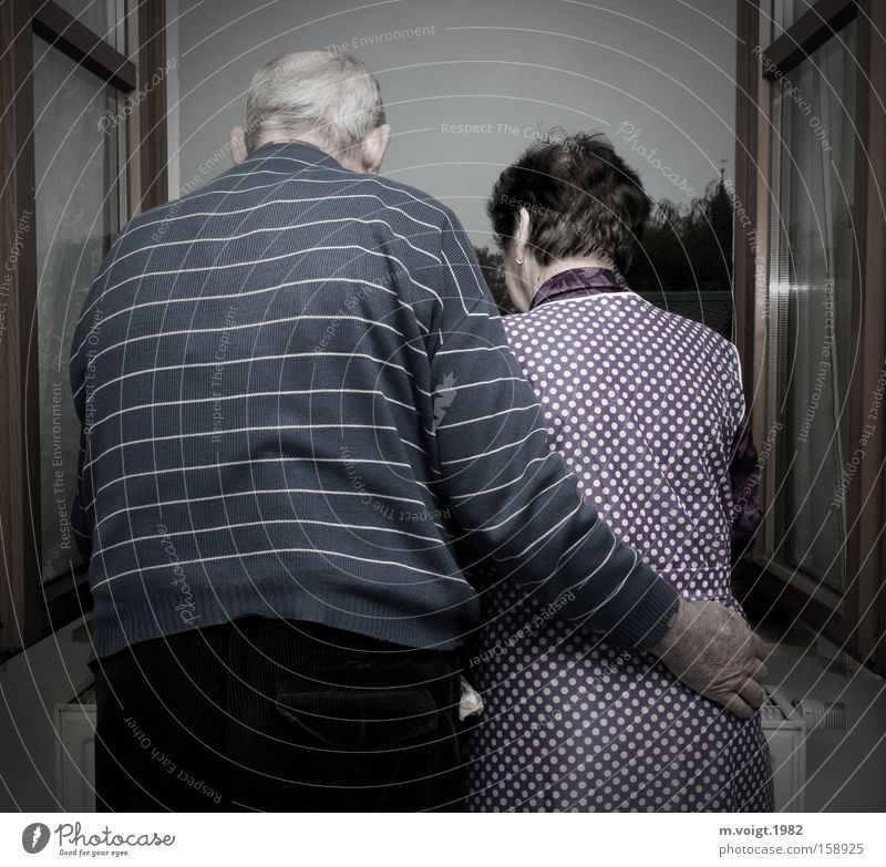 Growing old together Life Grandparents Senior citizen Grandfather Grandmother Couple 60 years and older Window Old Touch Love Dream Authentic Together Happy