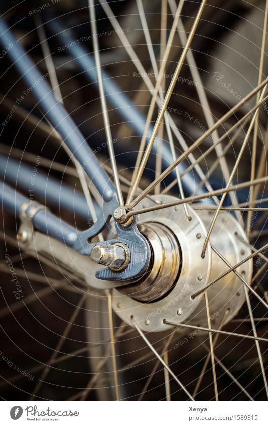 Wheel spokes Bicycle Metal Blue Silver Spokes Muddled Screw Exterior shot Close-up Deserted Colour photo Day Detail Subdued colour Means of transport