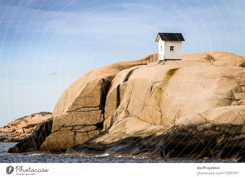Fishing hut on rocks in the archipelago Vacation & Travel Tourism Trip Adventure Far-off places Freedom Sightseeing Environment Nature Landscape Plant Summer