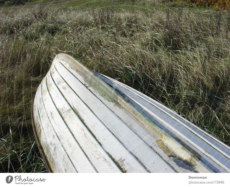 aground Watercraft White Meadow Beach Loneliness Obscure Partially visible Island