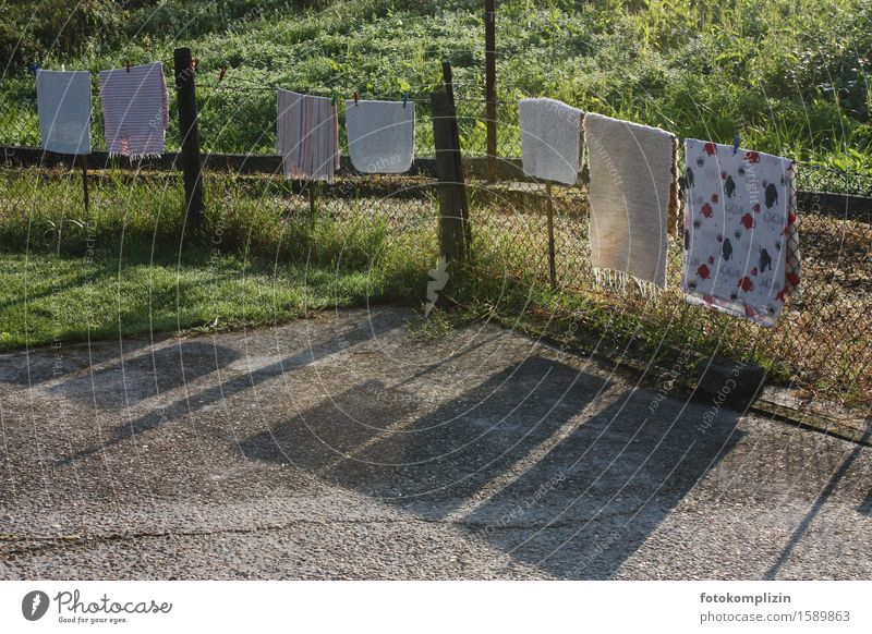 clotheslines rest Fence Clothesline Laundry Wire netting Wire netting fence Hang Throw Dirty Clean Dry Calm Cleanliness Nostalgia Hang up Carpet