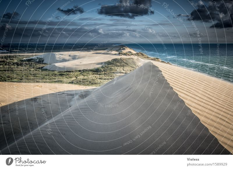 desert planet Vacation & Travel Summer Sun Beach Ocean Waves Coast Bay North Sea Discover Relaxation Beach dune Dune Rubjerg Wanderdüne Rubjerg Knude Lighthouse