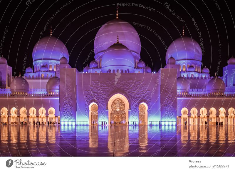 1001 Night VII Capital city Building Architecture Mosque Tourist Attraction Landmark Esthetic Exceptional Blue Violet Abu Dhabi Might Religion and faith Islam