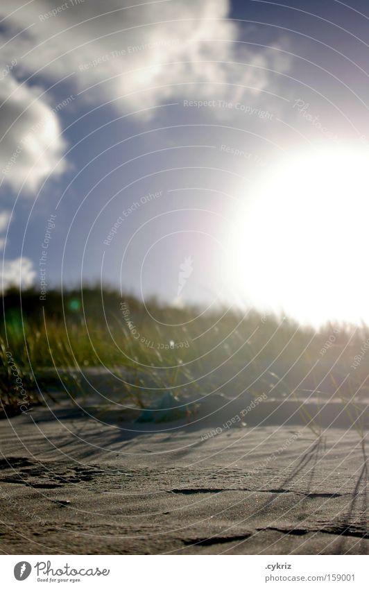 Sky Sun Beach Clouds Grass Freedom Sand Moody Coast Tourism Leisure and hobbies Idyll Beach dune Brazil
