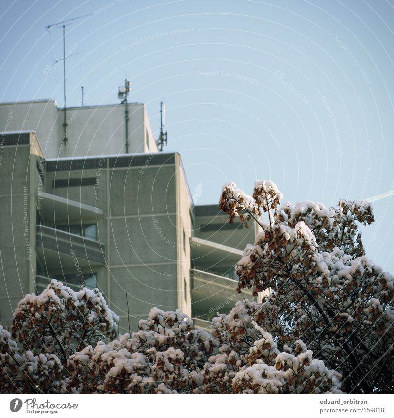 Tree Winter House (Residential Structure) Cold Snow Square Antenna Prefab construction Tower block