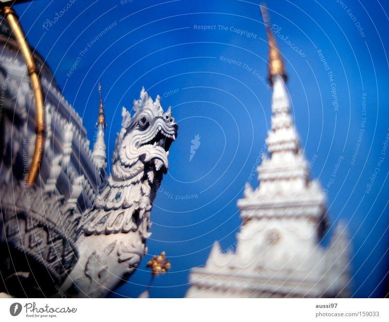 Asia Dragon Go under Thailand Temple Washed out Smoke-filled