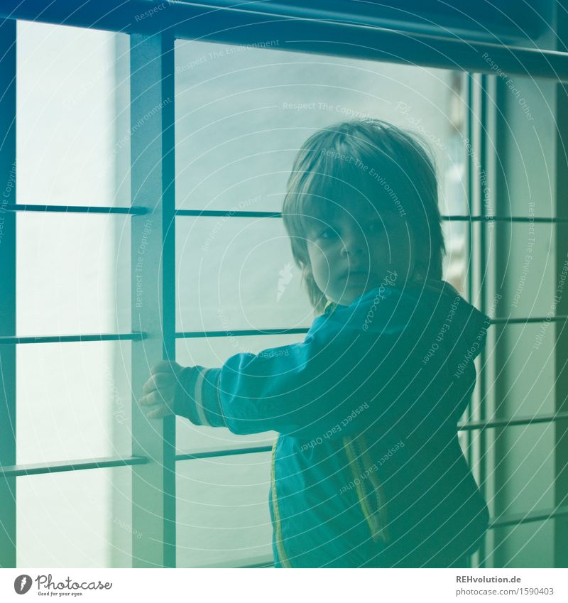 Human being Child Blue Green Loneliness Window Boy (child) Small Masculine Infancy Stand Wait Adventure Curiosity Protection Safety