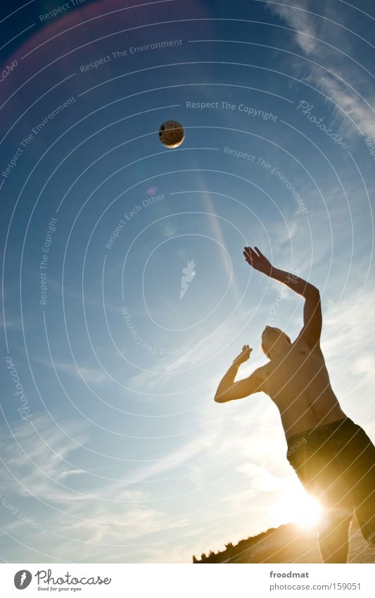 Man Youth (Young adults) Sun Summer Jump Playing Warmth Sand Cool (slang) Ball Concentrate Athletic Tension Barefoot Volleyball (sport) Ball sports