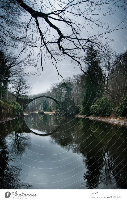 Hole in the landscape Environment Nature Landscape Plant Sky Clouds Horizon Weather Tree Bushes Lakeside Manmade structures Arched bridge Round Idyll