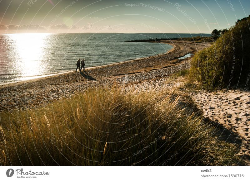 seascape Human being Woman Adults Man 2 Environment Nature Landscape Plant Sand Air Water Sky Clouds Horizon Autumn Beautiful weather Grass Bushes Coast