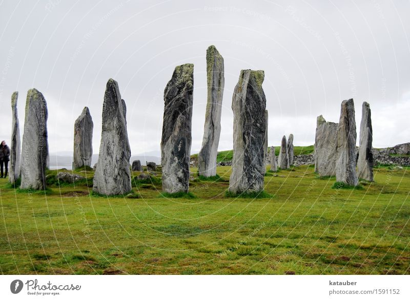 standing stones Landscape Clouds Bad weather Grass Meadow Tourist Attraction Monument Stand Old Famousness Gigantic Historic Green Unwavering Stone Callanish