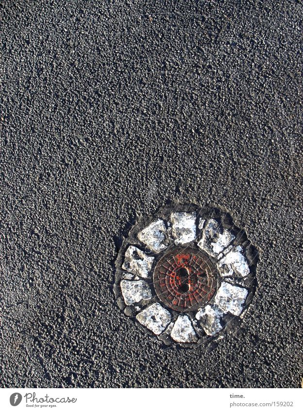 White Flower Street Blossom Lanes & trails Metal Round Decoration Asphalt Traffic infrastructure Gully Paving stone