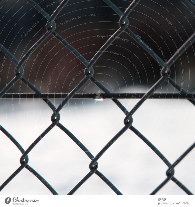thaw Snow Water Drops of water Glittering Fence Wire Melt Molten Snow melt rasp Sunlight Dew Thaw Wire netting Wire netting fence Wire fence