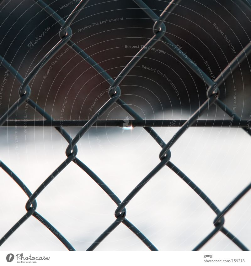 Water Snow Glittering Drops of water Drop Fence Dew Wire Melt Thaw Wire netting fence Wire netting Snow melt Molten Wire fence