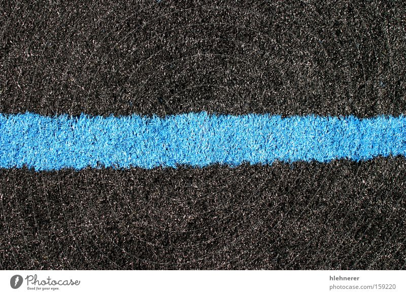 Black Blue Lawn Nature Blue Plant Black Landscape Sports Grass Lawn Playing field Ball sports