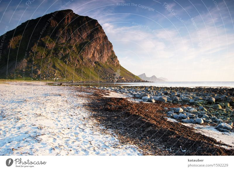typical lofoten Landscape Sand Water Beautiful weather Algae Hill Rock Coast Beach Stone Norway Lofotes Infinity Natural Adventure Loneliness Relaxation Freedom
