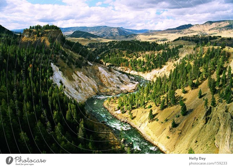 Yellowstone River Tree Green Slope Water Clouds Forest National Park Rock Rapid Landscape Shadow Brook USA Coast