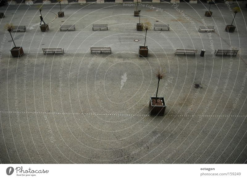 cold and sad winter Grief Distress Residenz Muenchen Platz nobody grey Cold Gloomy Winter