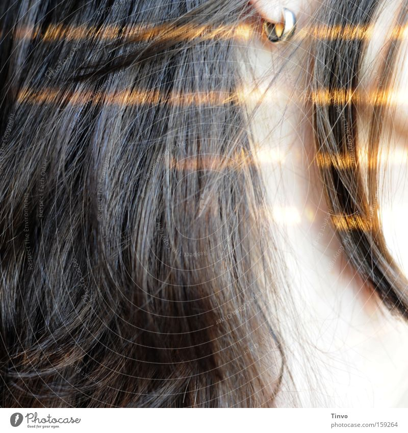 until the morning comes Hair and hairstyles Tip of the hair Brunette Earring Strip of light Neck Silver Gold Morning Sunlight Striped Profile Woman To enjoy