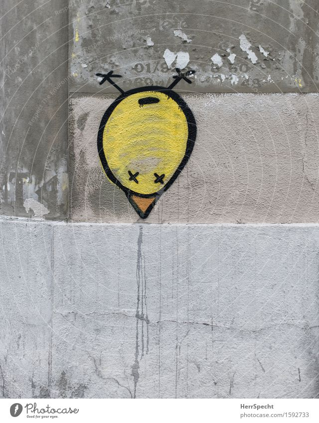 City Yellow Wall (building) Graffiti Funny Wall (barrier) Art Exceptional Gray Bird Round Trashy Beak Street art Strange Chick