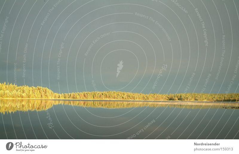 Water Sky Joy Vacation & Travel Colour Forest Lake Moody Adventure Mirror Scandinavia