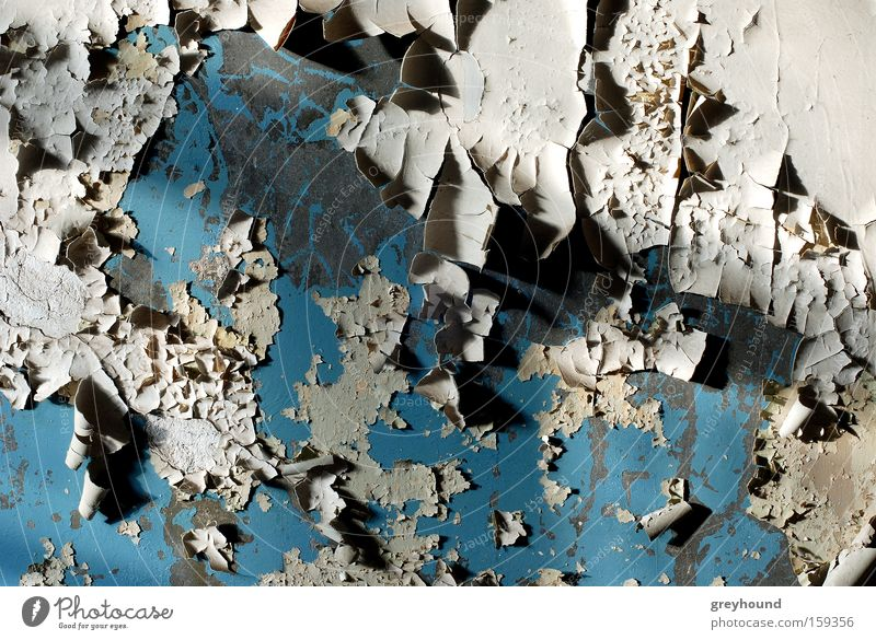 skin loss Plaster Flake off Old Ruin Loneliness Wallpaper Blue Gloomy Derelict Transience wall paint