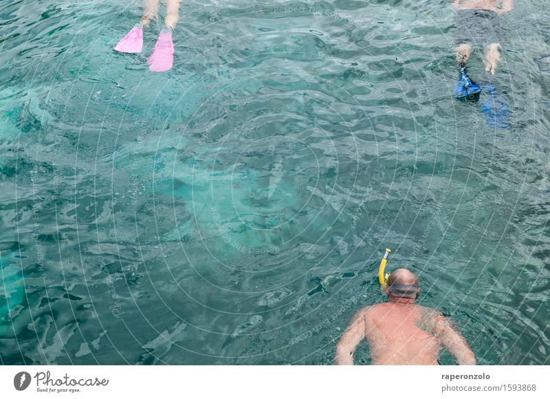 Human being Vacation & Travel Man Blue Summer Water Ocean Relaxation Adults Swimming & Bathing Lake Tourism Discover Dive Turquoise Summer vacation