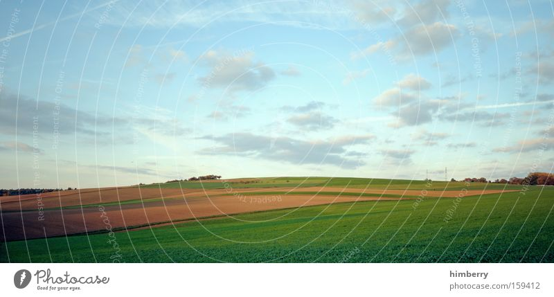 Nature Sky Clouds Meadow Spring Landscape Field Large Agriculture Seasons Organic produce Panorama (Format) Organic farming
