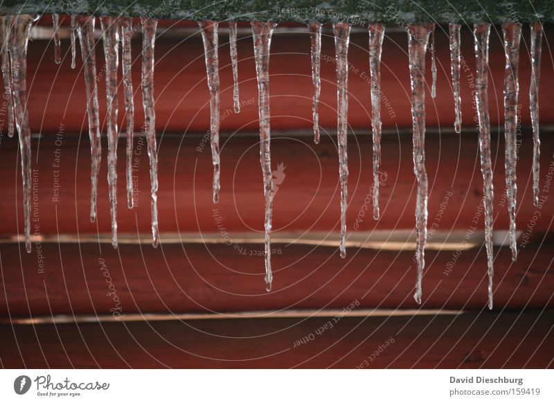 Last winterdays II Colour photo Exterior shot Detail Structures and shapes Day Contrast Winter Ice Frost Line Cold Red Icicle Cone Joist Seasons Frozen