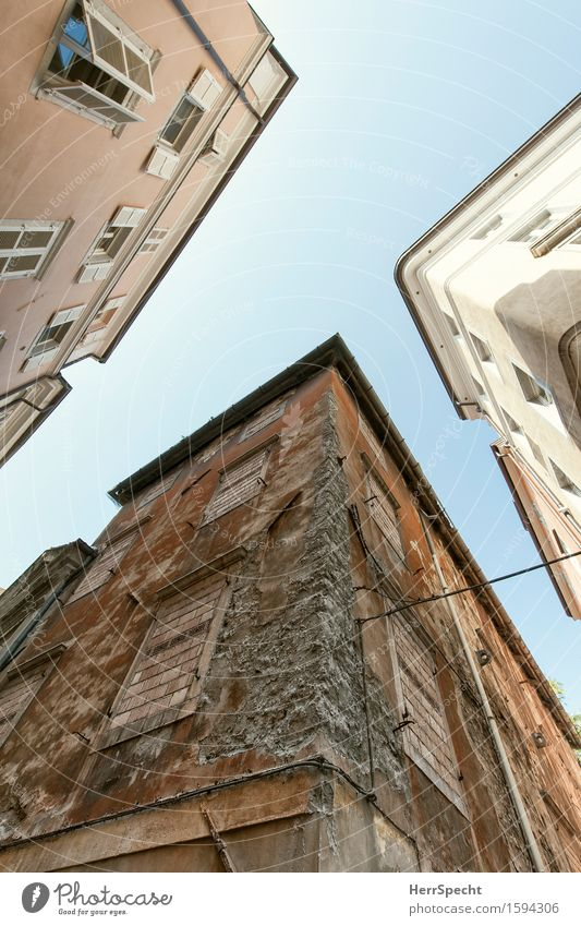 /Y Trieste Italy Downtown Old town House (Residential Structure) Building Architecture Wall (barrier) Wall (building) Facade Window Historic Town Brown Gray Red