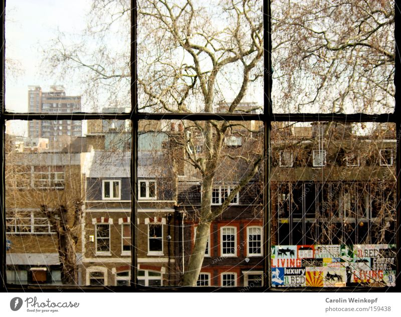 Hoxton Square. London England Great Britain Tree House (Residential Structure) Window Looking Vantage point Flat (apartment) Loft Living or residing