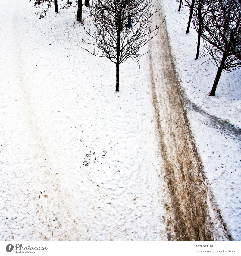 Last snow Snow Winter Snow layer Lanes & trails Footpath Tree Avenue Bird's-eye view Frost Winter maintenance program Janitor Transience Park clearance
