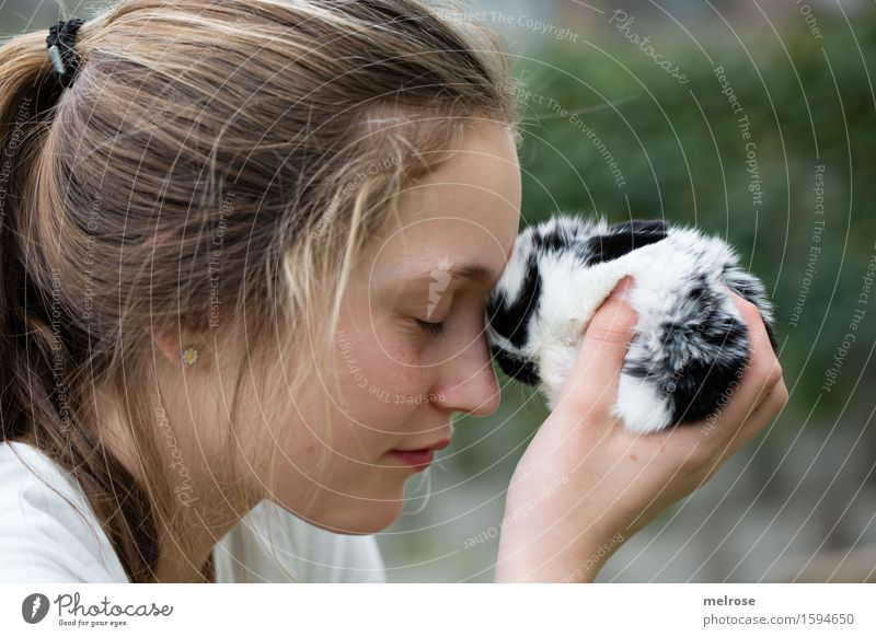 exchange of ideas Girl Head Face Hand Fingers 1 Human being 8 - 13 years Child Infancy Pet Animal face Pelt Pygmy rabbit baby hare Mammal Rodent hare spoon