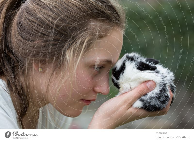 Look me in the eyes ... Girl Face Arm Hand Fingers 1 Human being 8 - 13 years Child Infancy Pet Pelt baby hare Pygmy rabbit rodent Mammal hare spoon
