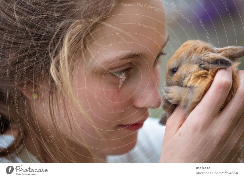 Human being Child White Hand Animal Girl Face Baby animal Love Small Brown Contentment Infancy To enjoy Fingers Observe