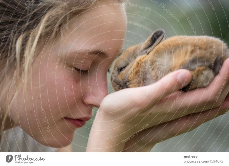 Love you so much Human being Girl Face Hand Fingers 1 8 - 13 years Child Infancy Pet Pygmy rabbit Rodent Mammal Animal Baby animal Touch To enjoy Near Cute Soft
