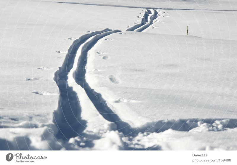Winter Snow Lanes & trails Switzerland Tracks Deep snow Number one